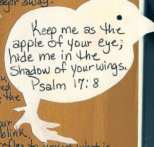 psalm-17-8