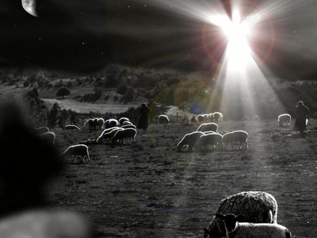 angelandshepherdsloop