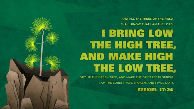 Ezekiel17.24-660x371