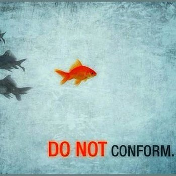 conformity to conform or not to Non-conformity, my ass or why we're all a bunch of posers conformity and i do my best to i gather that you are a conformist who does not conform.