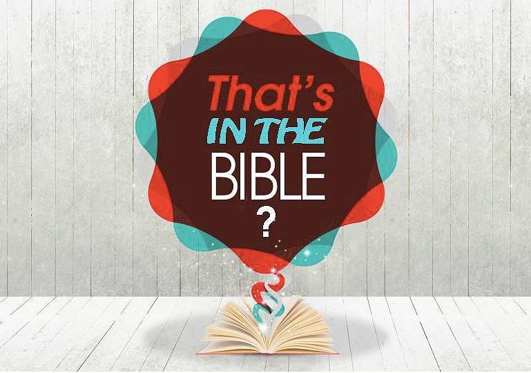 Bible Stories 1