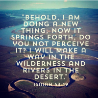Devotional - Isaiah 43.18-19