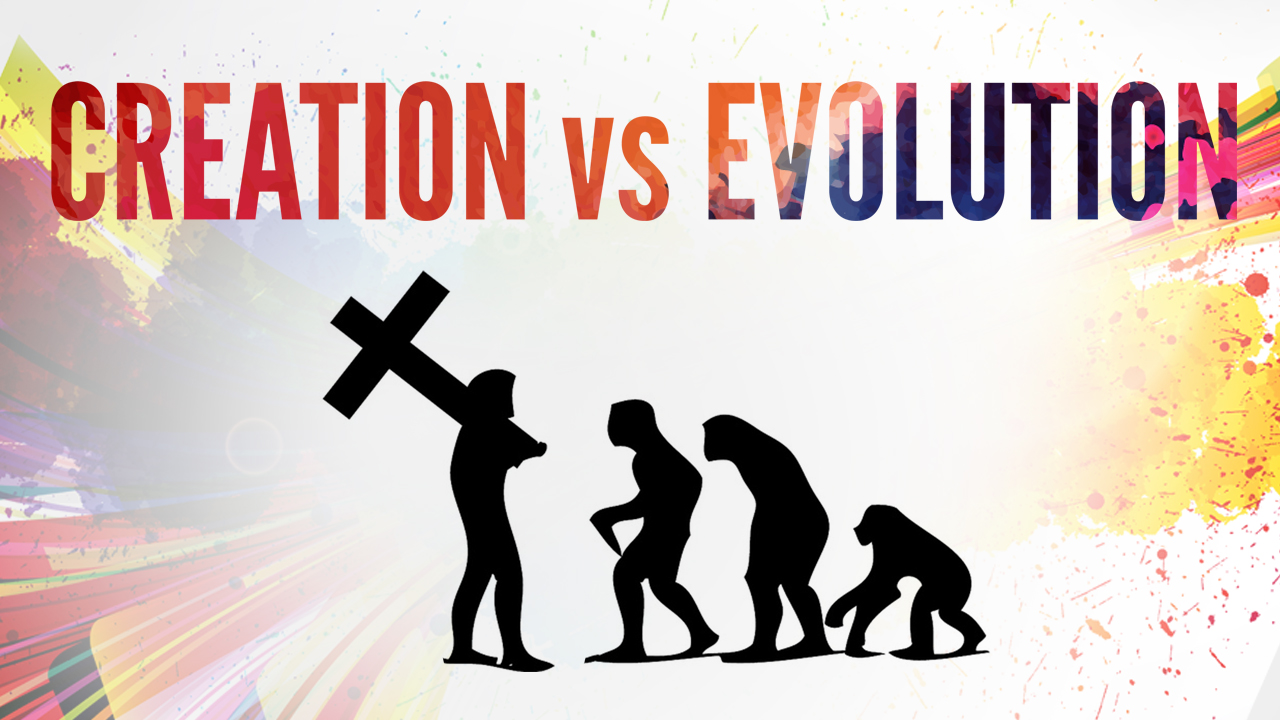 creation vs evolution worksheet